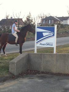 Treya USPS Post Office Pony Express