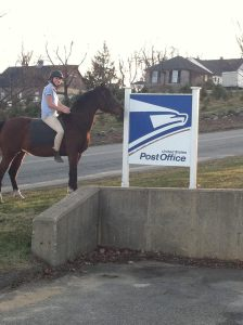 Treya USPS Post Office Pony Express