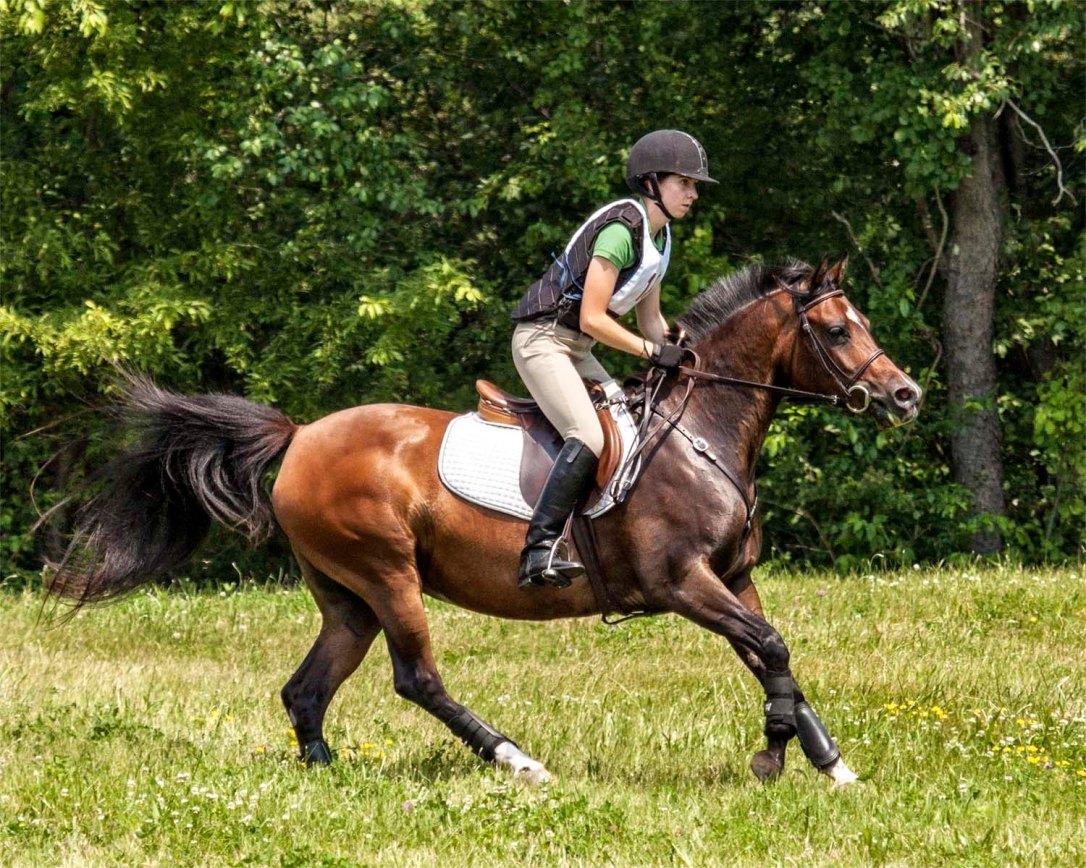 Jocelyn Pierce Mongol Derby