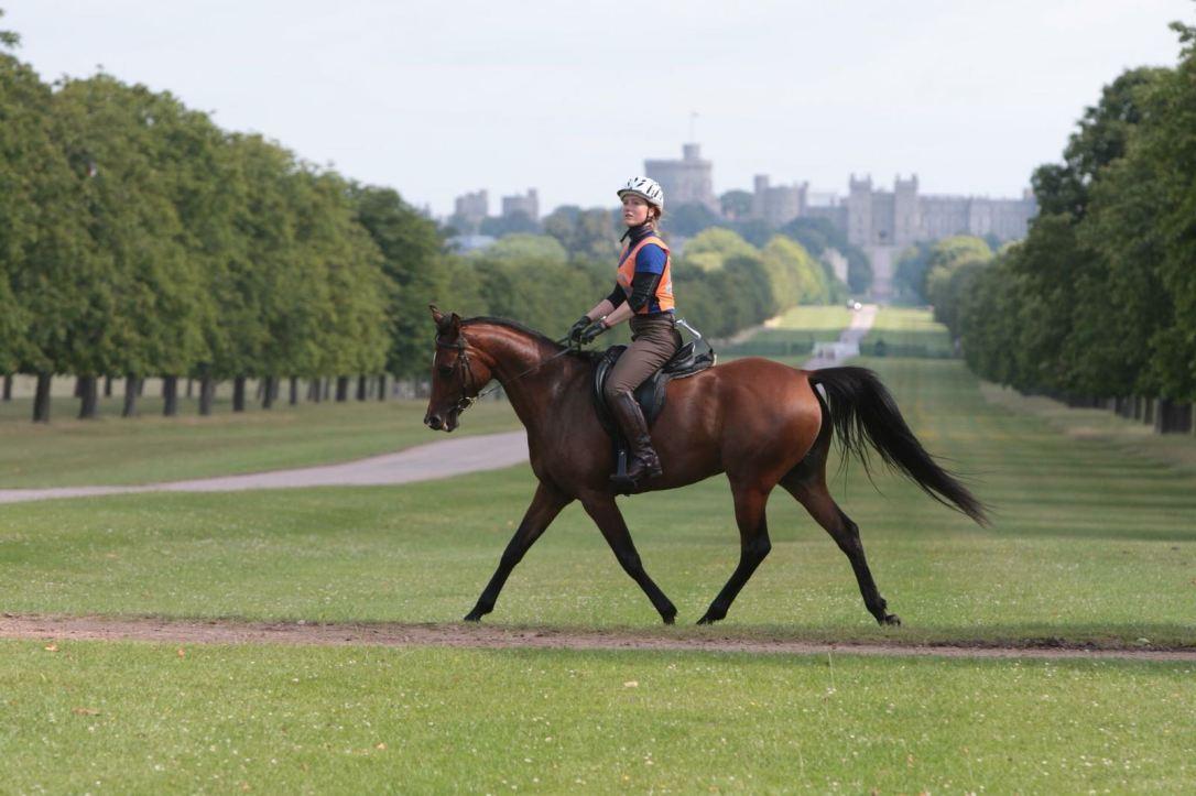 Katy Willings Endurance Riding